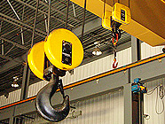 Crane capacities to 40 tons